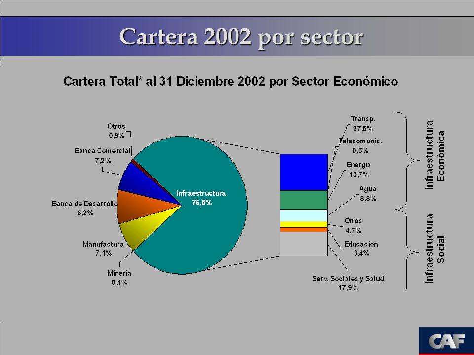 Cartera 2002 por sector
