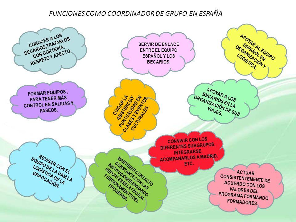 FUNCIONES COMO COORDINADOR DE GRUPO EN ESPAÑA