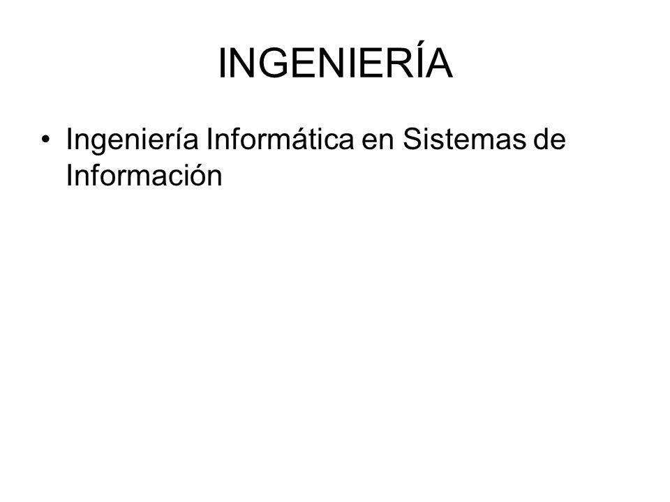 INGENIERÍA Ingeniería Informática en Sistemas de Información