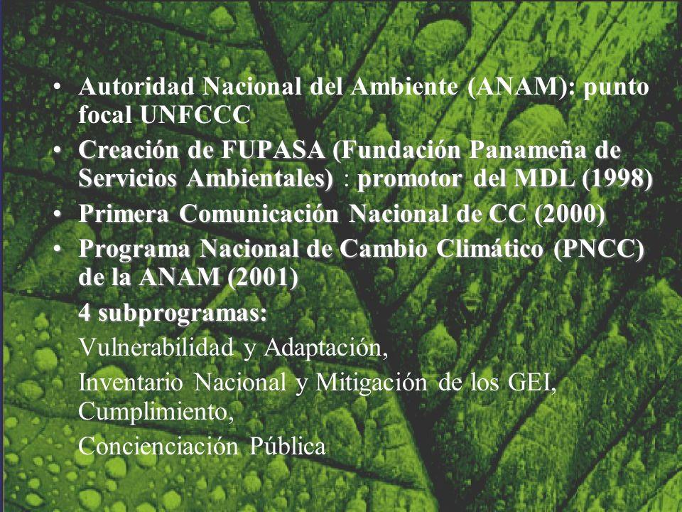 Autoridad Nacional del Ambiente (ANAM): punto focal UNFCCC