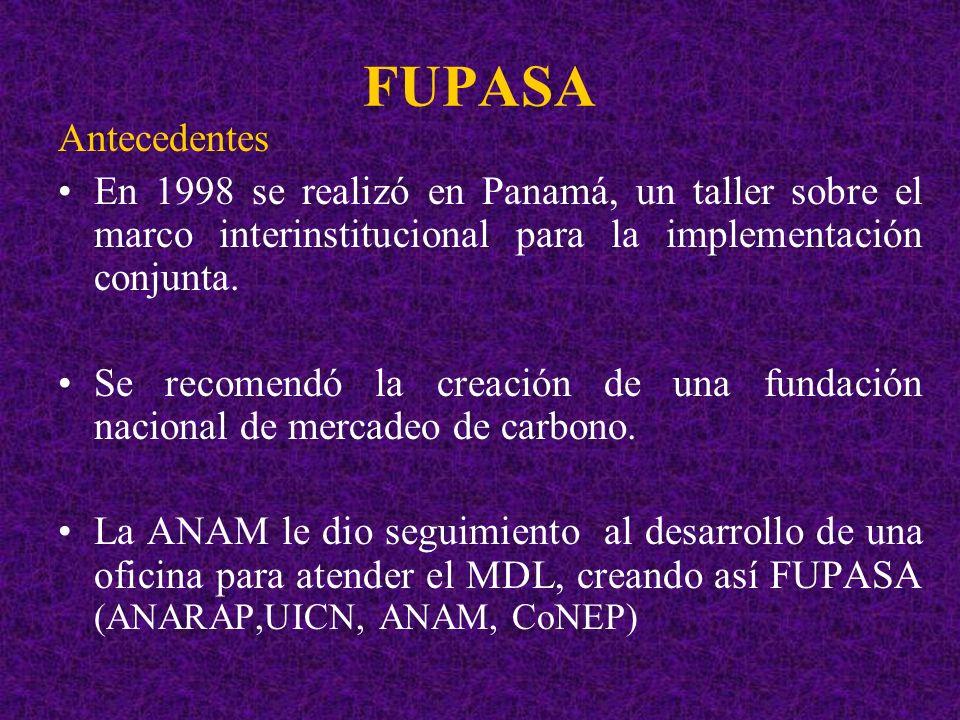 FUPASA Antecedentes. En 1998 se realizó en Panamá, un taller sobre el marco interinstitucional para la implementación conjunta.