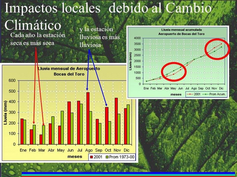 Impactos locales debido al Cambio Climático