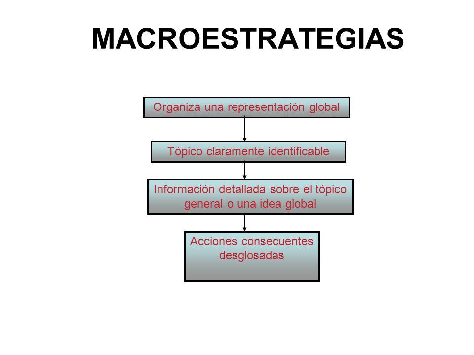 MACROESTRATEGIAS Organiza una representación global