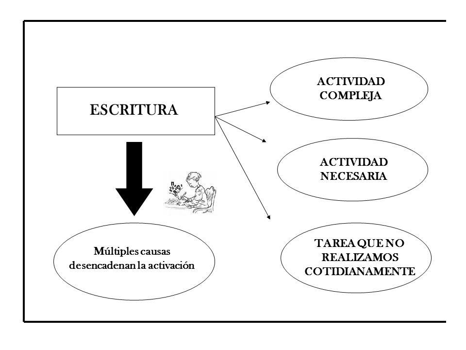 ESCRITURA ACTIVIDAD COMPLEJA ACTIVIDAD NECESARIA