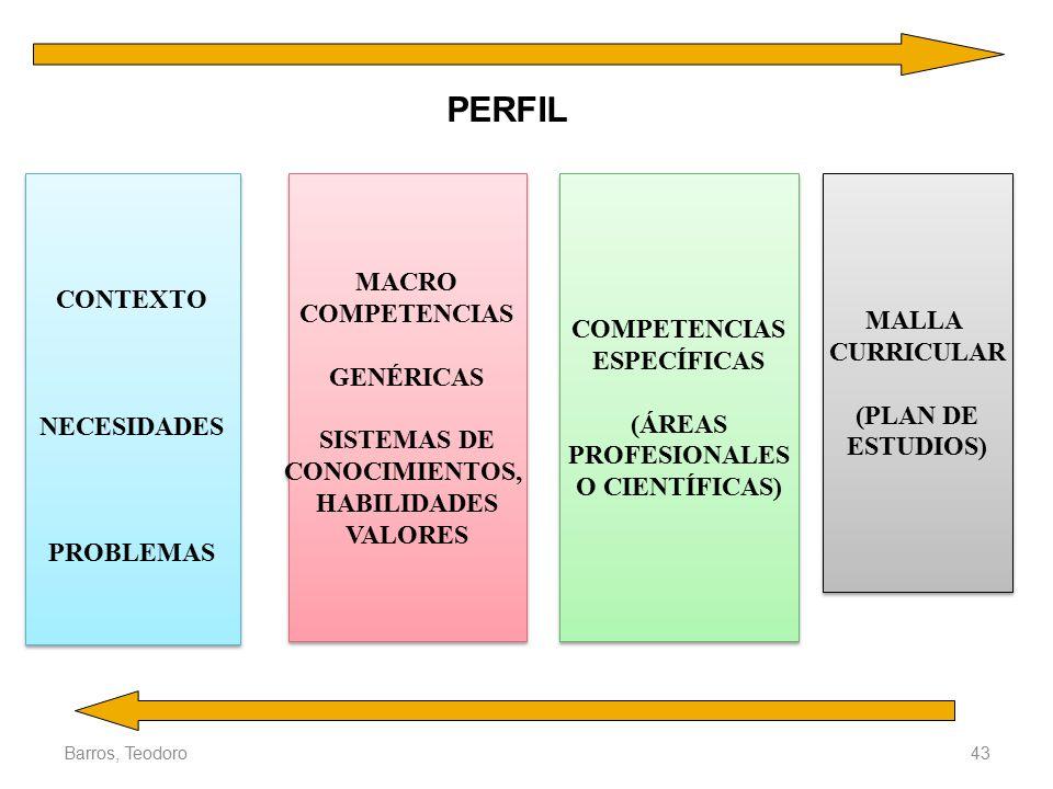 PERFIL MACRO CONTEXTO COMPETENCIAS MALLA COMPETENCIAS CURRICULAR