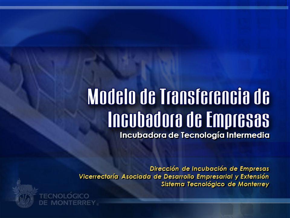 Incubadora de Tecnología Intermedia
