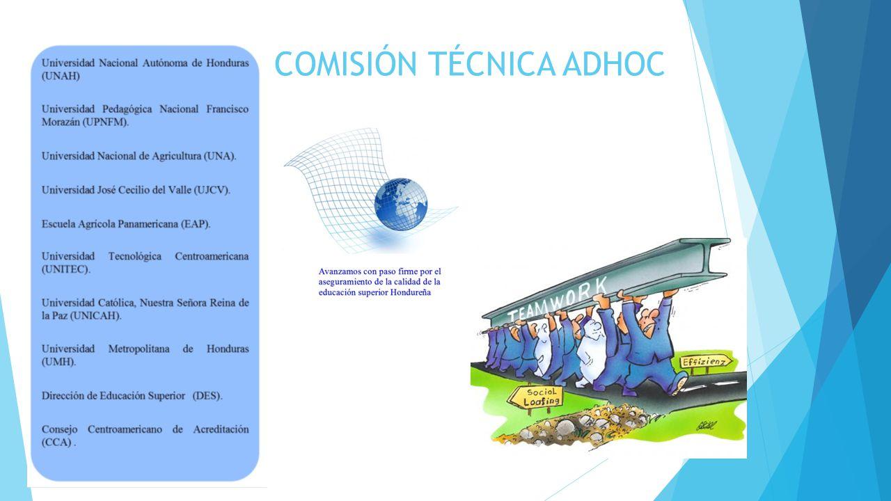 COMISIÓN TÉCNICA ADHOC