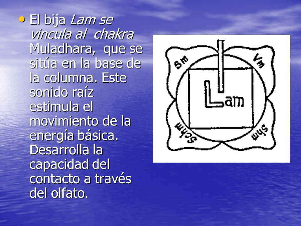 El bija Lam se vincula al chakra Muladhara, que se sitúa en la base de la columna.