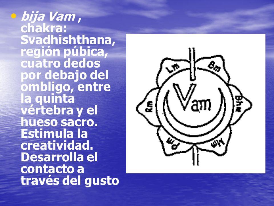 bija Vam , chakra: Svadhishthana, región púbica, cuatro dedos por debajo del ombligo, entre la quinta vértebra y el hueso sacro.