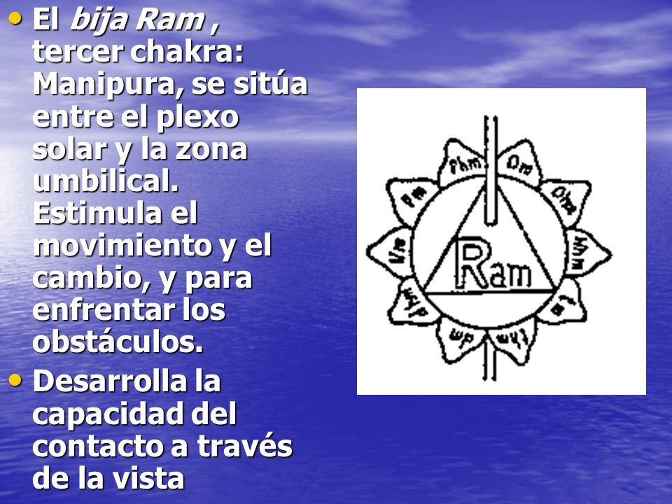 El bija Ram , tercer chakra: Manipura, se sitúa entre el plexo solar y la zona umbilical. Estimula el movimiento y el cambio, y para enfrentar los obstáculos.