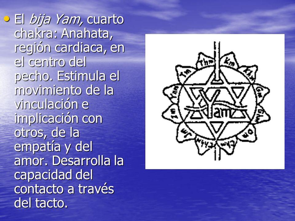 El bija Yam, cuarto chakra: Anahata, región cardiaca, en el centro del pecho.
