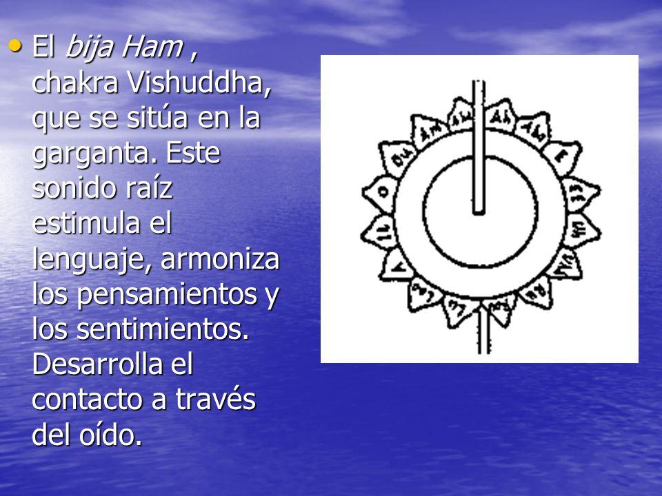 El bija Ham , chakra Vishuddha, que se sitúa en la garganta