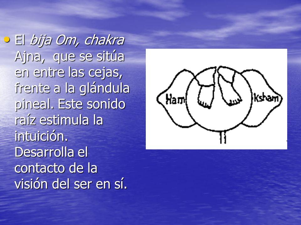 El bija Om, chakra Ajna, que se sitúa en entre las cejas, frente a la glándula pineal.