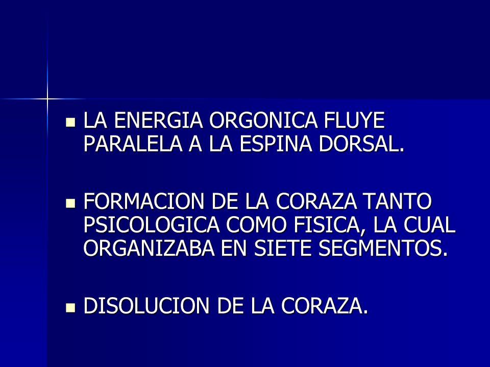 LA ENERGIA ORGONICA FLUYE PARALELA A LA ESPINA DORSAL.