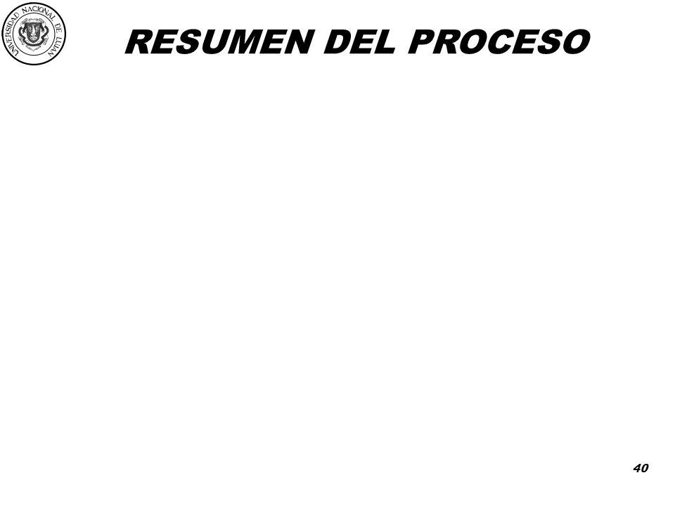 RESUMEN DEL PROCESO 40