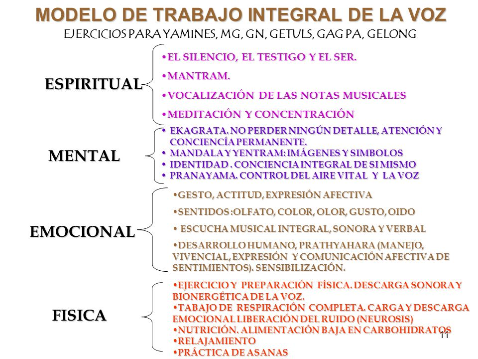 MODELO DE TRABAJO INTEGRAL DE LA VOZ