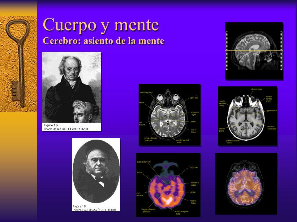 Cuerpo y mente Cerebro: asiento de la mente