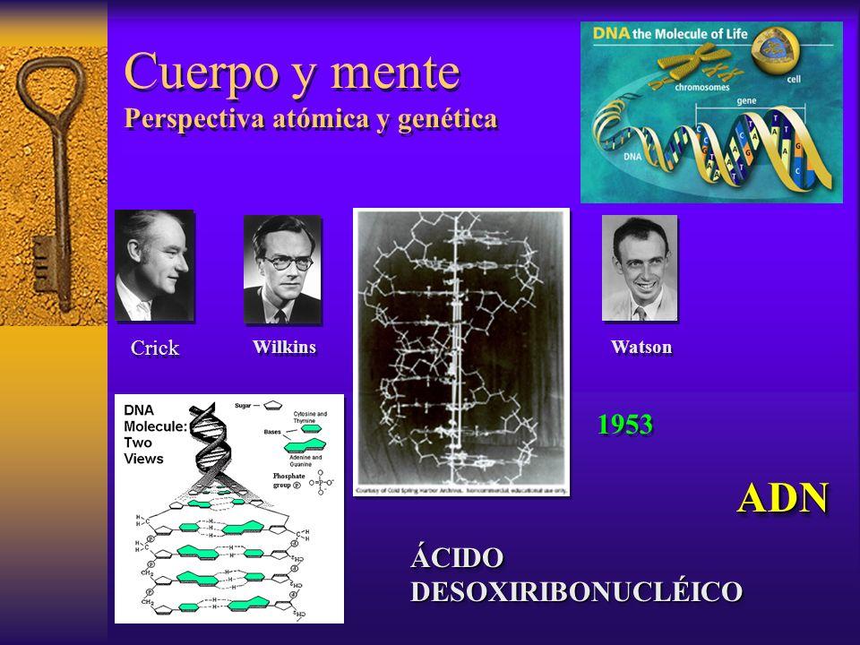 Cuerpo y mente Perspectiva atómica y genética
