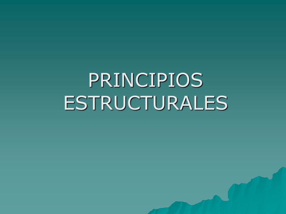 PRINCIPIOS ESTRUCTURALES