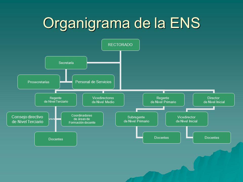 Organigrama de la ENS