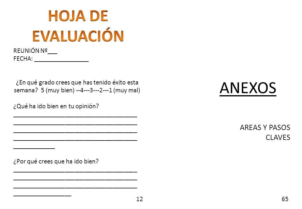 HOJA DE EVALUACIÓN ANEXOS AREAS Y PASOS CLAVES REUNIÓN Nº___
