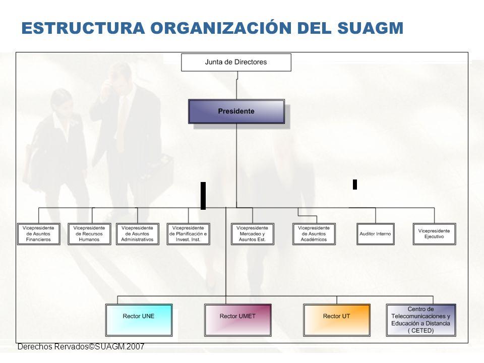 ESTRUCTURA ORGANIZACIÓN DEL SUAGM