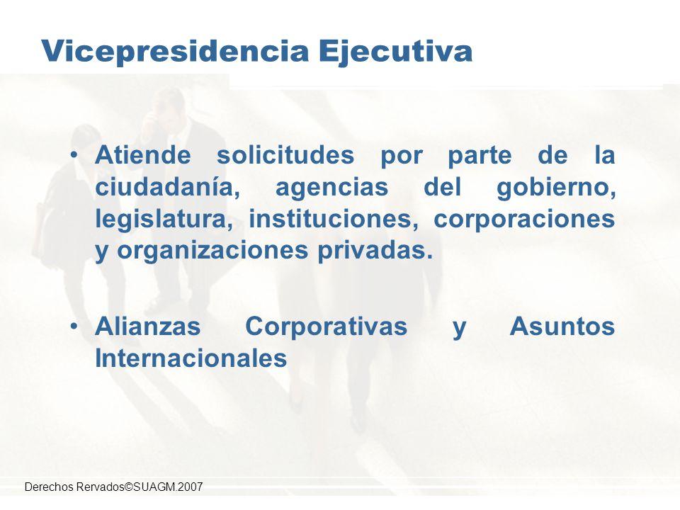 Vicepresidencia Ejecutiva