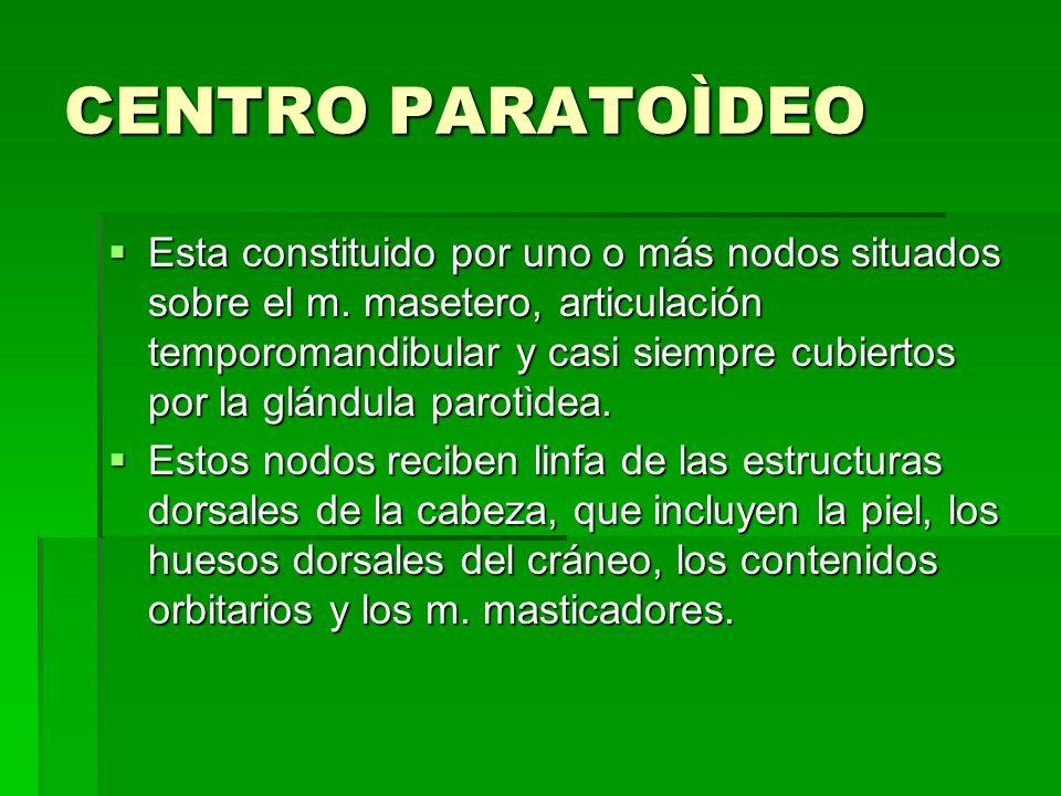 CENTRO PARATOÌDEO