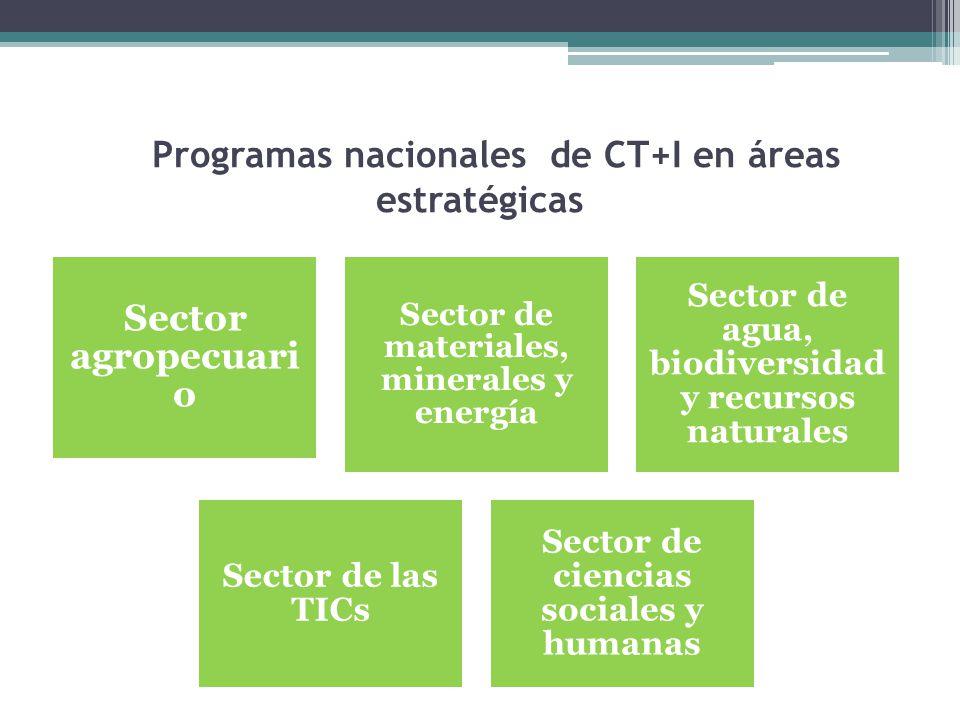 Programas nacionales de CT+I en áreas estratégicas