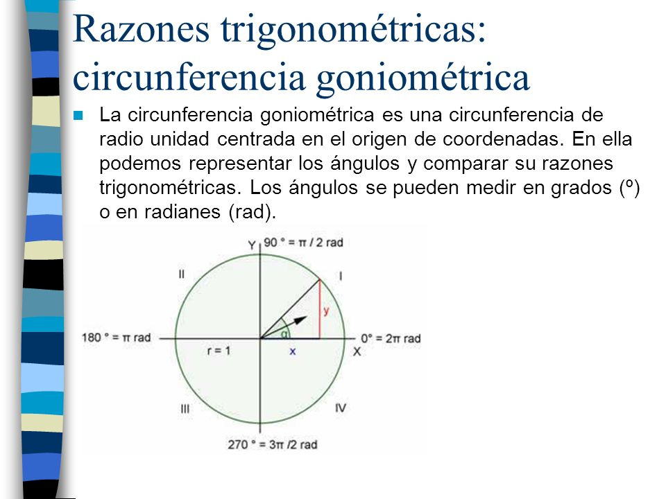 Razones trigonométricas: circunferencia goniométrica
