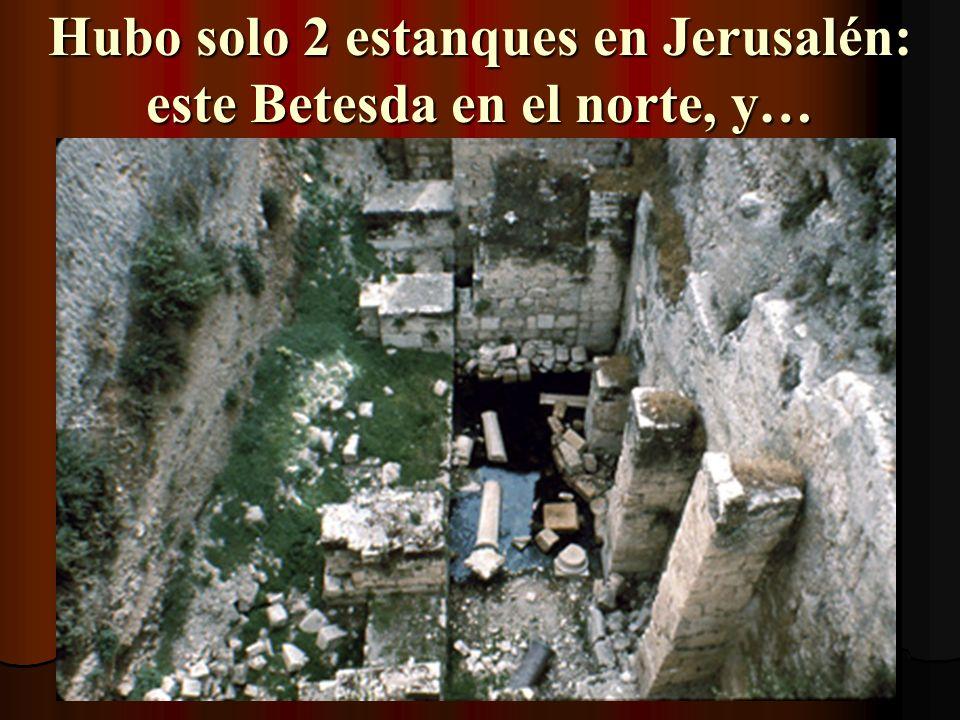 Hubo solo 2 estanques en Jerusalén: este Betesda en el norte, y…