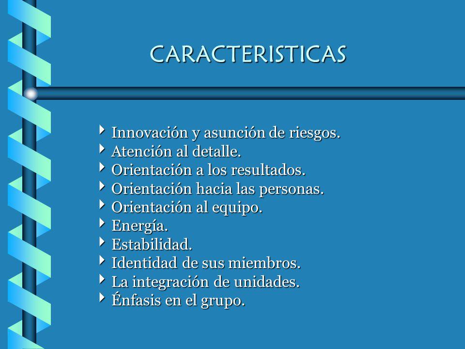 CARACTERISTICAS Innovación y asunción de riesgos. Atención al detalle.