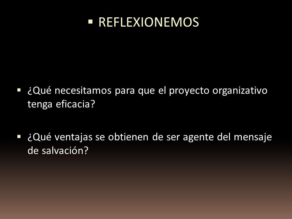 REFLEXIONEMOS ¿Qué necesitamos para que el proyecto organizativo tenga eficacia.