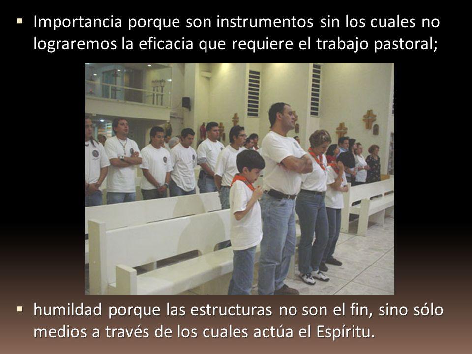 Importancia porque son instrumentos sin los cuales no lograremos la eficacia que requiere el trabajo pastoral;