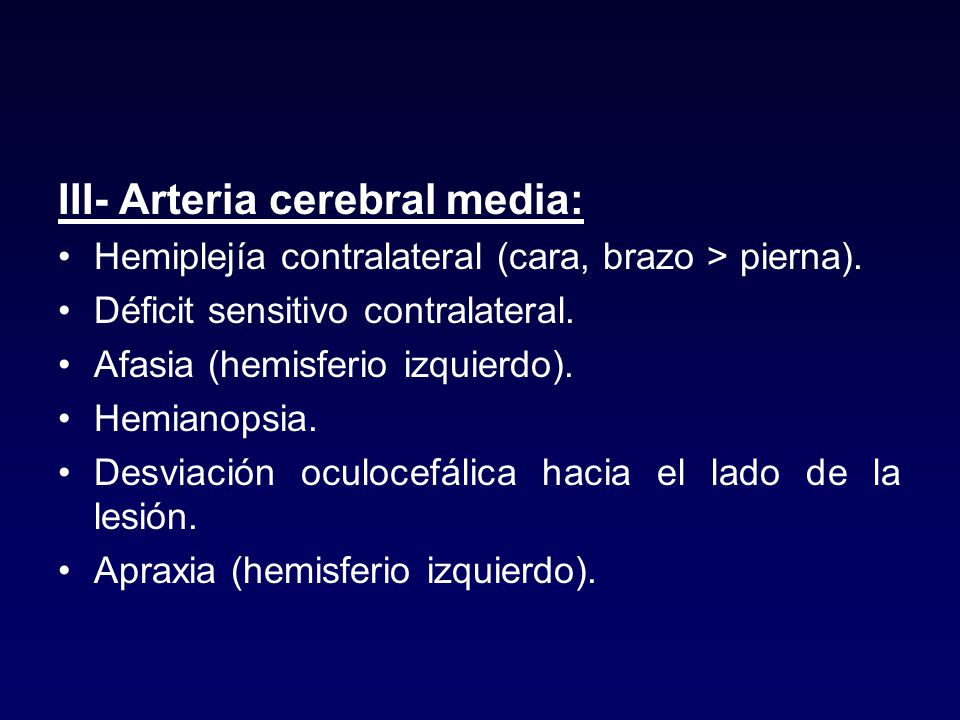 III- Arteria cerebral media: