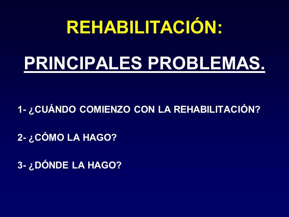 PRINCIPALES PROBLEMAS.