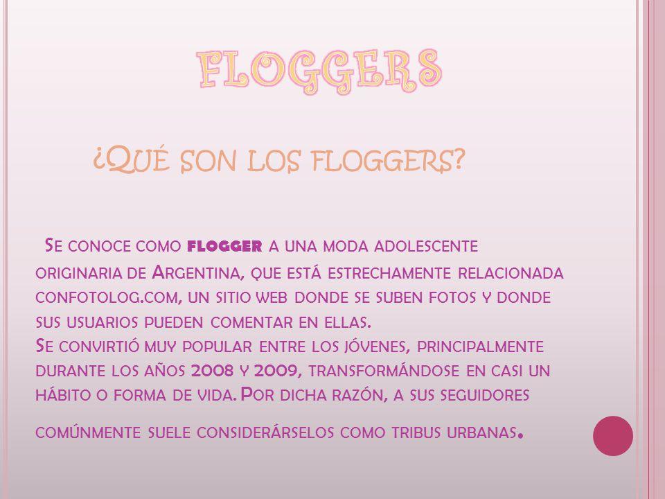 FLOGGERS ¿Qué son los floggers