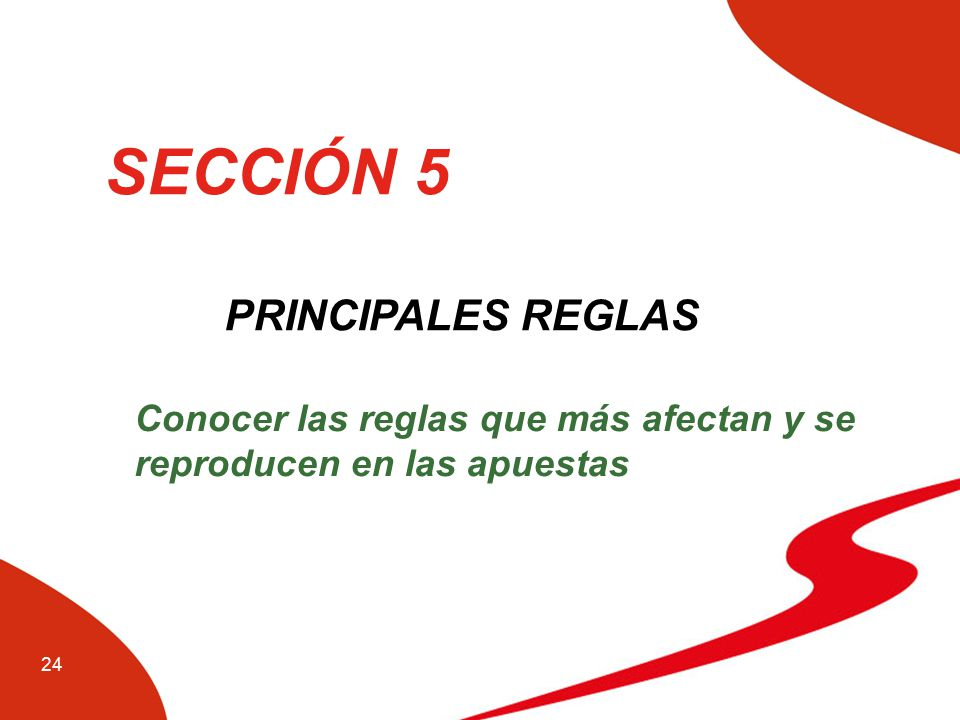 SECCIÓN 5 PRINCIPALES REGLAS
