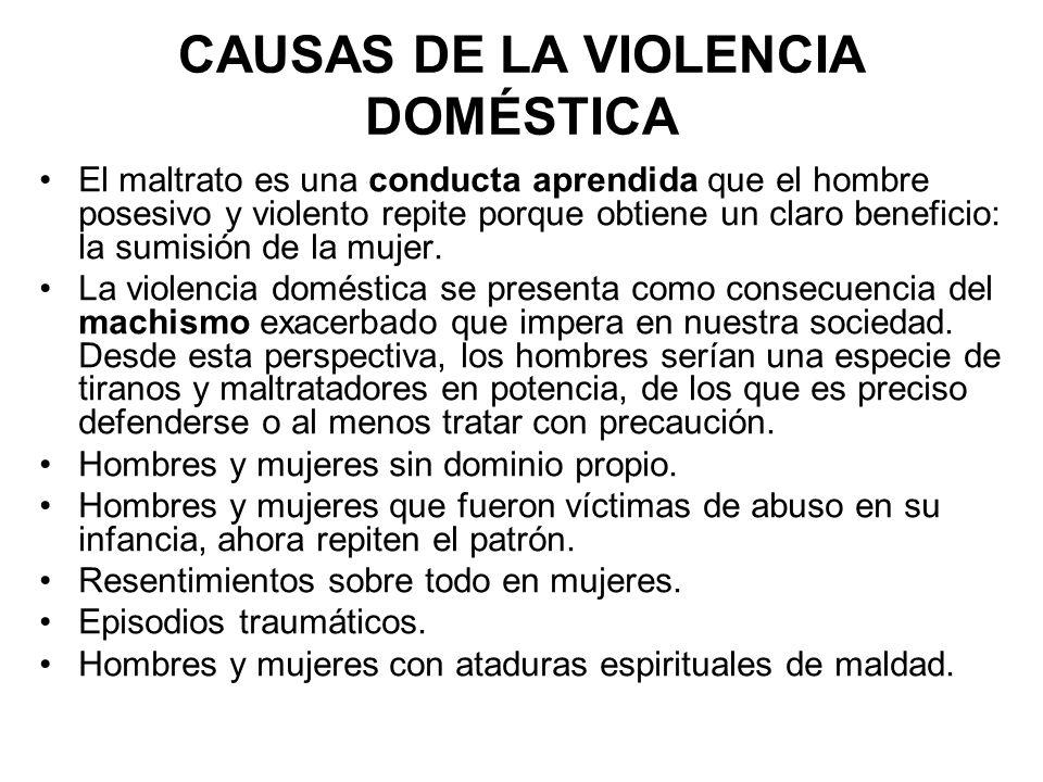 CAUSAS DE LA VIOLENCIA DOMÉSTICA