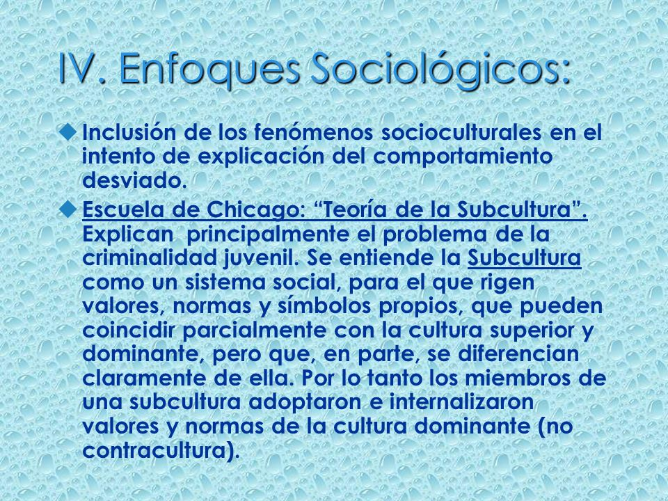 IV. Enfoques Sociológicos: