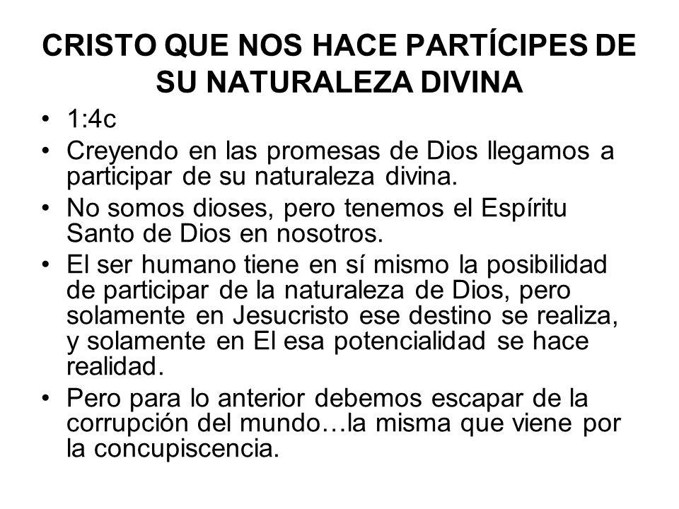 CRISTO QUE NOS HACE PARTÍCIPES DE SU NATURALEZA DIVINA