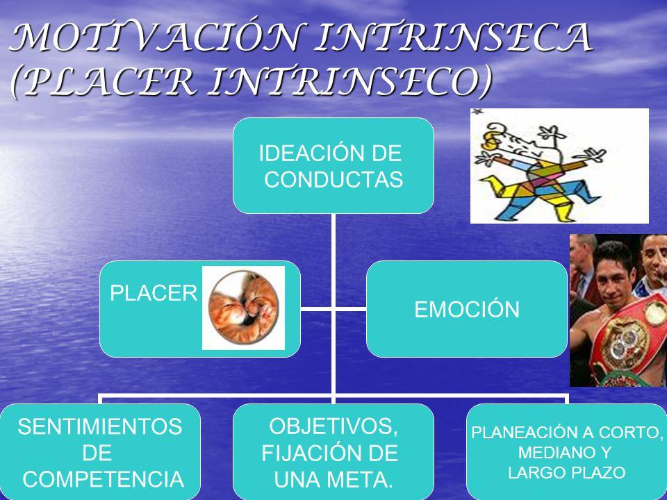 MOTIVACIÓN INTRINSECA (PLACER INTRINSECO)