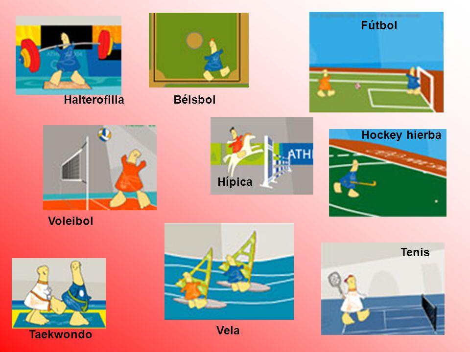 Fútbol Halterofilia Béisbol Hockey hierba Hípica Voleibol Tenis Vela Taekwondo