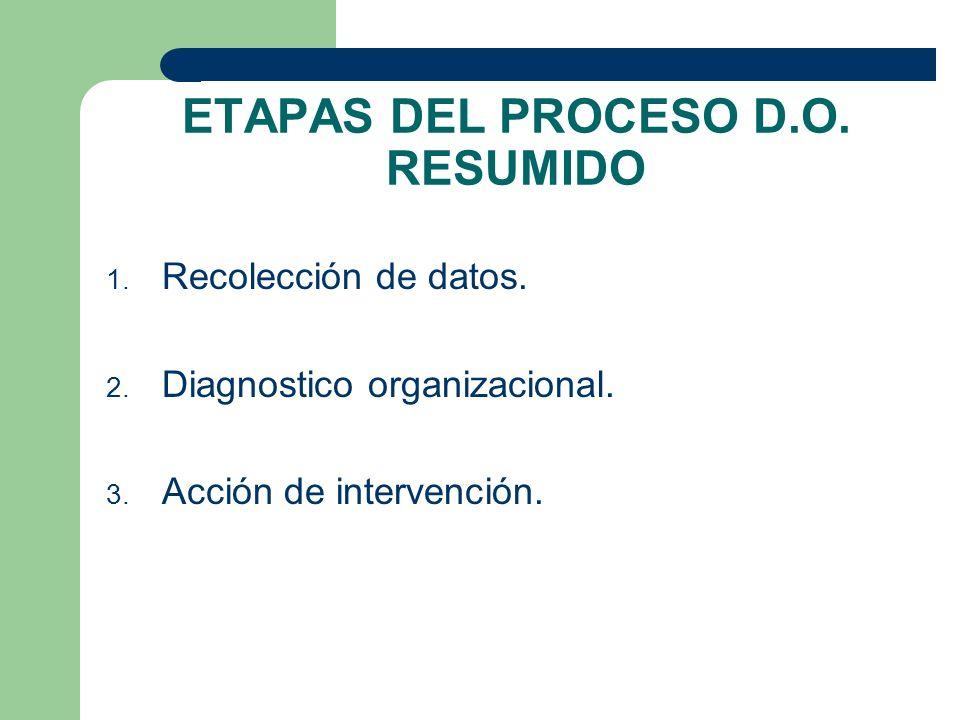ETAPAS DEL PROCESO D.O. RESUMIDO
