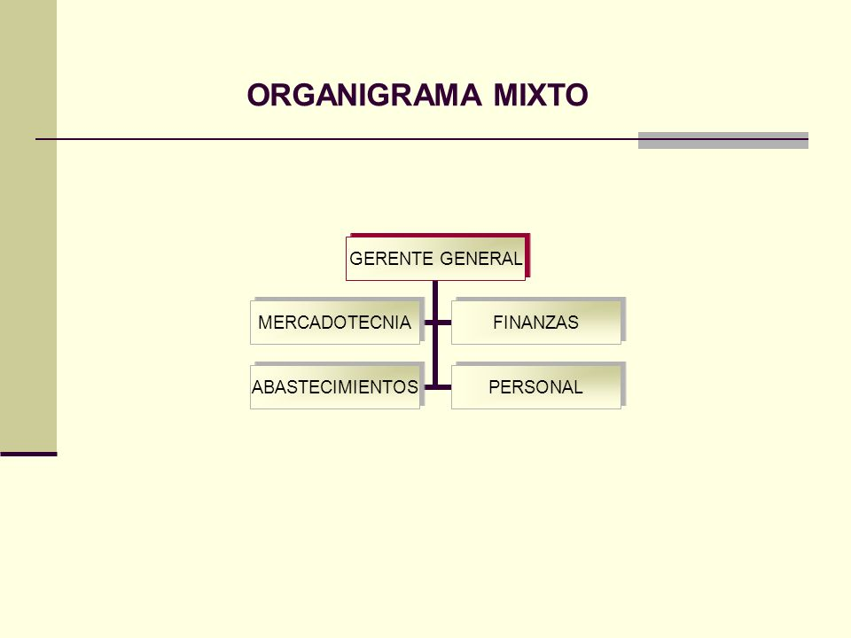 ORGANIGRAMA MIXTO