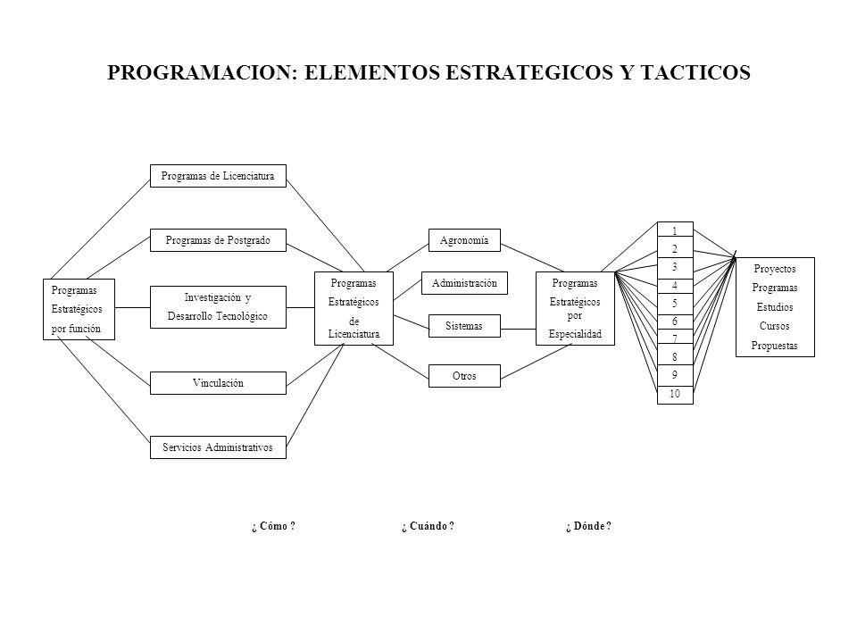 PROGRAMACION: ELEMENTOS ESTRATEGICOS Y TACTICOS
