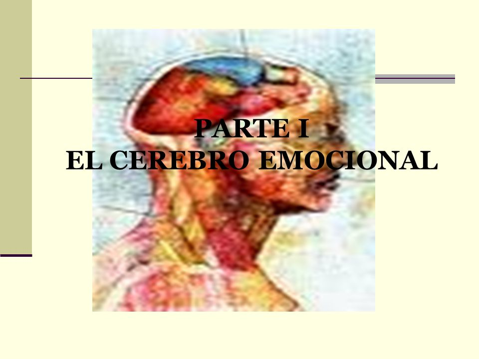 PARTE I EL CEREBRO EMOCIONAL