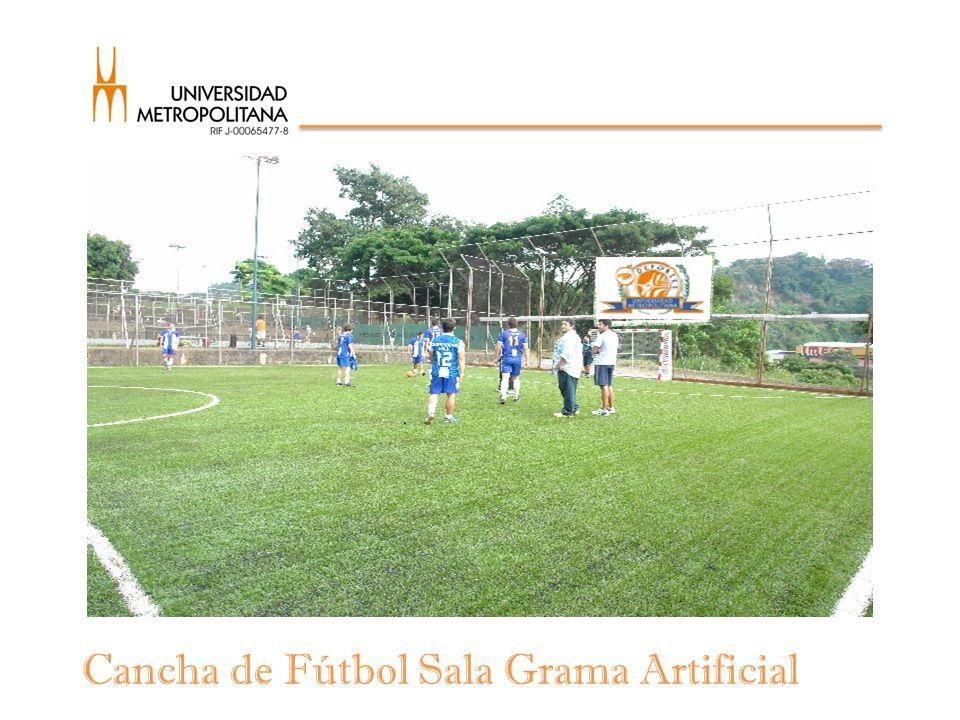 Cancha de Fútbol Sala Grama Artificial