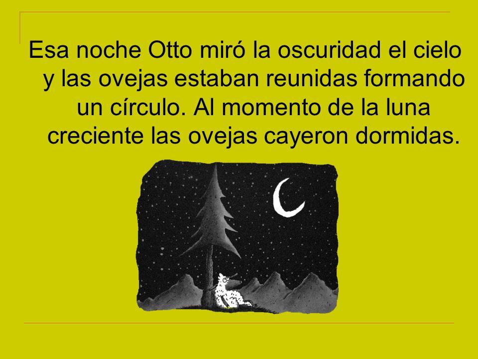 Esa noche Otto miró la oscuridad el cielo y las ovejas estaban reunidas formando un círculo.