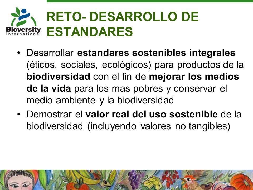 RETO- DESARROLLO DE ESTANDARES